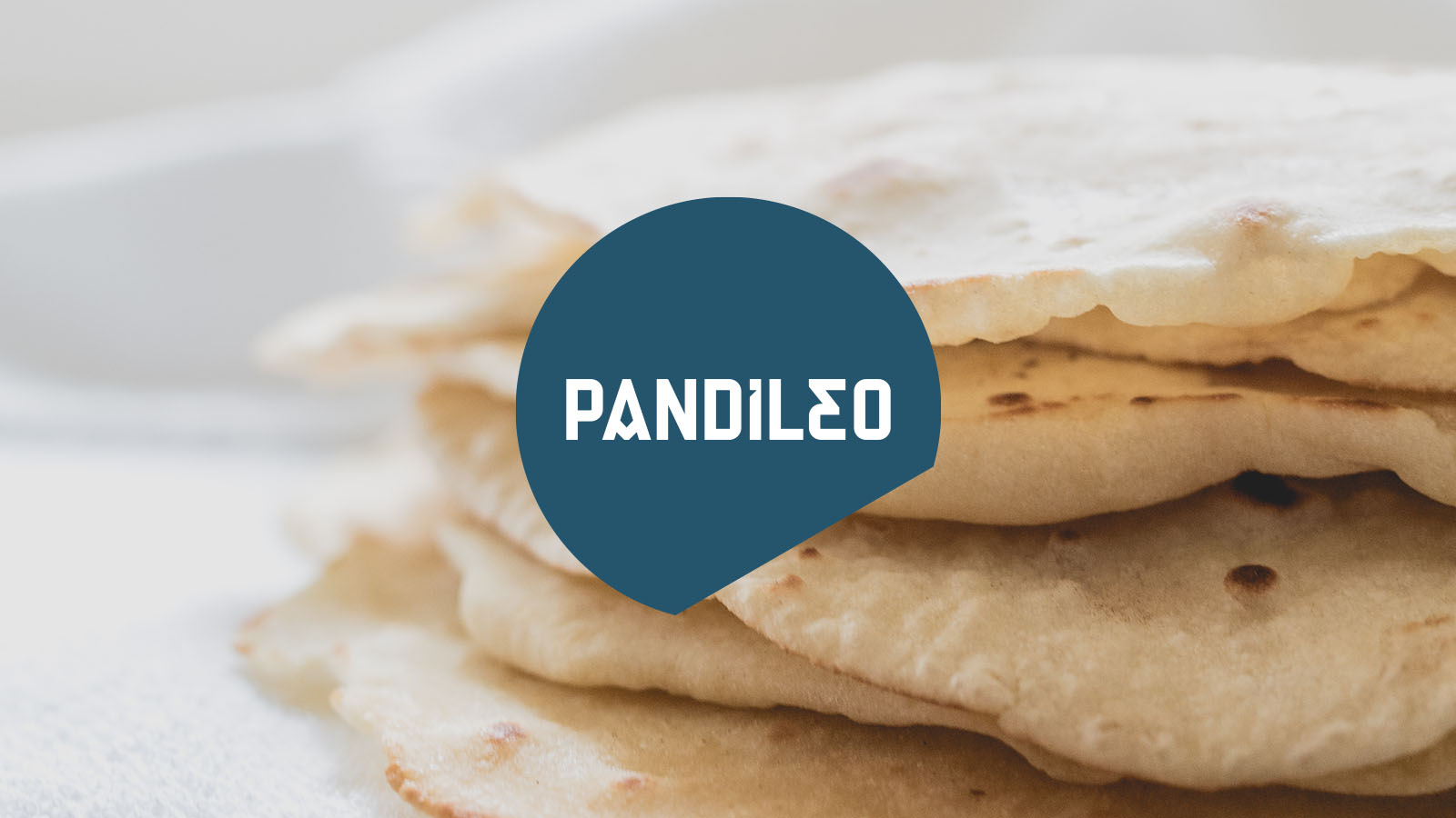 Pandileo — Corporate Design — Burrito